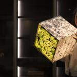 Ambient light cube lamp with a stone pattern and green leaves. A beautiful girl looking on the design lighting